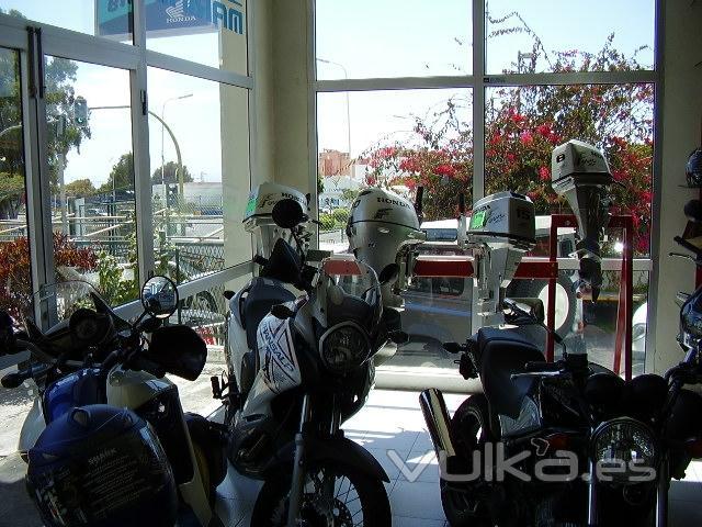 EXPO  MOTOCICLETAS