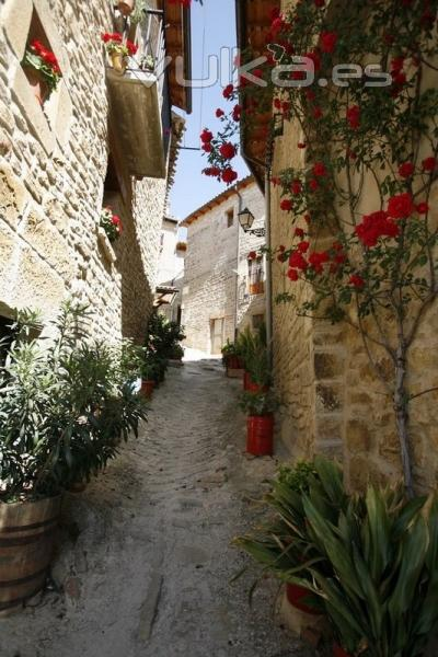 Calle tipica de San Martin de Unx