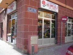 Floristeria la camelia (santa cruz de tenerife) - foto 3