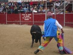 Asistencia medico sanitaria en plaza de toros ayuntamiento. ambulancias san jose