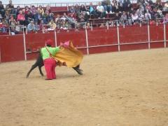 Toros, corridas, capeas, payasos en plaza de toros. ambulancias san jose asistencia medica sanitaria