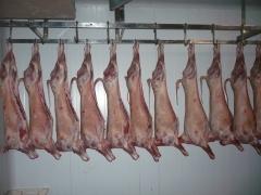 Carniceria ram�n, venta de queso manchego puro de oveja y productos c�rnicos caseros.