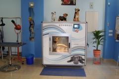 Cabina de lavado, secado e hidromasaje de lavakan, en pet spa. la forma segura y económica de lavar