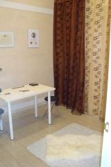 Sala de tarapias naturales: reiki, healing touch y flores de bach, para animales en pet spa madrid