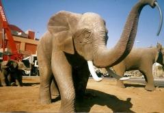 Tematizaci�n elefante para decoraci�n de piscina