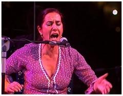 Lunes y miércoles Noches con recital flamenco con Mati Gómez y Rafael Soler