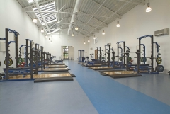 Fitness y gimnasios