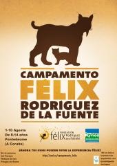 Aqu� toda la info www.xurl.es/campamento_felix