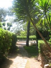 Jardineria mes natur - foto 11