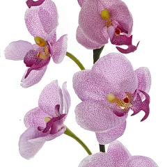 Rama artificial flores orquideas peque�as lila con hojas en lallimona.com (detalle 2)