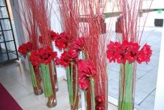 Las flores nuestra especialidad