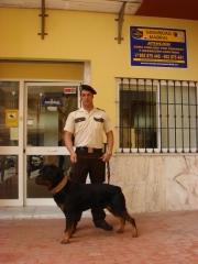 Foto 195 se�alizaci�n de seguridad - Seguridad Especializada Mabral 2003 S.l.