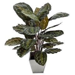 Planta artificial calathea natural 65 en lallimona.com (detalle 3)
