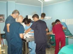 Periodicamente organzamos cursos en la clinica para actualizar conocimientos y aprender nuevas tecni