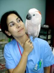 Cande, nuestra auxiliar experta en aves. adiestra