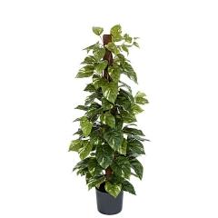 Planta artificial pothos verde 122 en lallimona.com