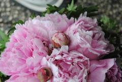 Ramo de novia peonias mayula flores