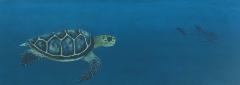 Cuadro tortuga carey y tibur�n ballena