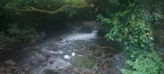 Bella fotografia de ríos para vinilos de pared.