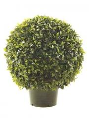 Articoencasa.com -bolas de ficus, boj y laurel. todos los di�metros y alturas. con o sin macetas. entra en nuestro ...