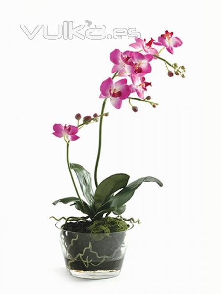 Foto orquideas artificiales maceta cristal grande con for Orquideas artificiales