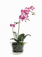 Orquideas artificiales. maceta cristal grande con phalaenopsis artificial ciclamen oasisdecor.com