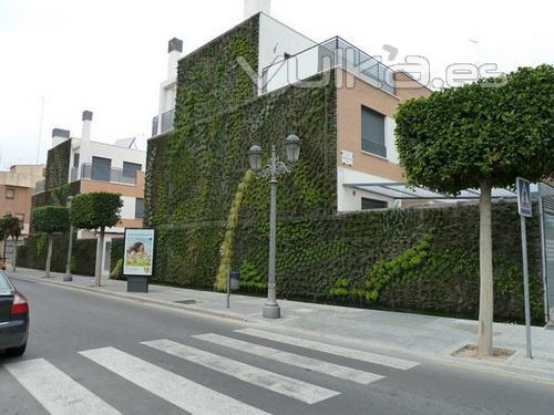 Urbanarbolismo arquitectura urbanismo y paisajismo for Jardines verticales alicante