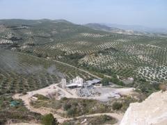 Alcayesos