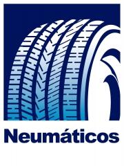 programa gestion talleres de neumaticos y mecanica del automovil