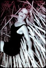 fotografo profesional Marbella
