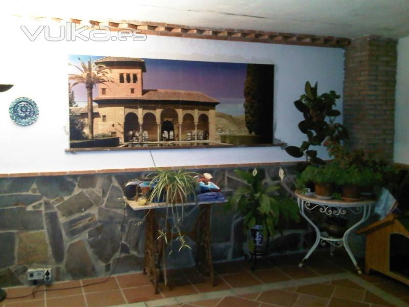 Foto mural para patio impreso directo en azulejos Azulejos patio