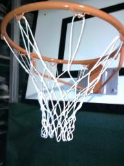 Canasta de baloncesto y red