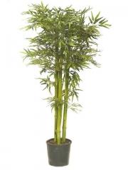 Articoencasa.com - �rbol bamb� con tronco natural en color verde, 1.80 m.