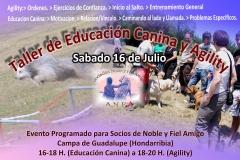 Taller Ciclo Formativo Educacion Canina Noble y Fiel Amigo