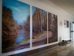 Fotografías en gran formato impresas sobre lienzo.  hospital la magdalena castellón