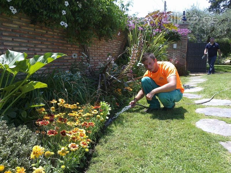 foto cuidado de jardines