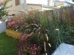 Realizaci�n peque�os jardines