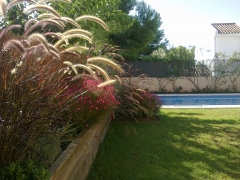 Jardineras con plantas