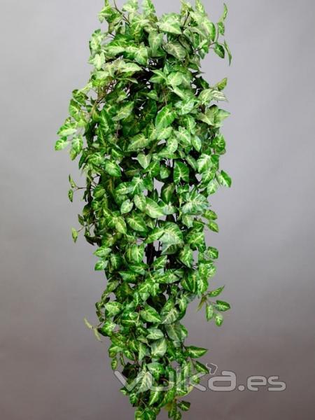 Foto plantas artificiales economicas planta colgante for Plantas suculentas colgantes