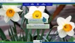 Diseño Web: www.ambientsa.net
