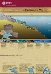 Diseño Gráfico:  Exposición Museo del Mar