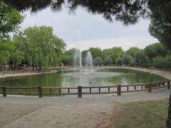 Proyecto de obra y construcci�n del parque enrique tierno galv�n