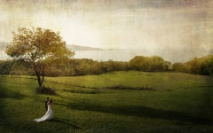 Reportajes artísticos de boda. visita nuestra web http://www.artefoto.net/