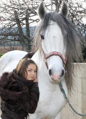 El caballo: en nuestro subconsciente educa y perpetúa la libertad y fuerza de conquista.
