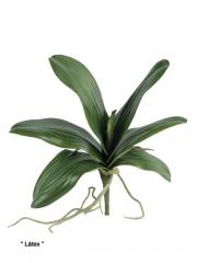 Plantas artificiales de calidad. hoja phalaenpsis artificial con raices oasis decor