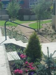 Jardines de bajo mantenimiento