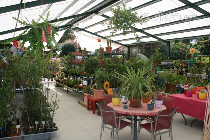 Garden center ca ada de la vi a - Garden center sevilla ...