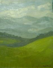 Prados verdes de asturias.