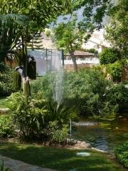 Jardín salvaje