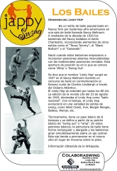 Revista jappy swing